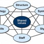 Organisatie-diagnose met het 7-S Model van McKinsey