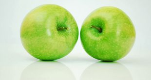 appels-header
