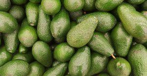 Hoe beoordeel je een avocado?